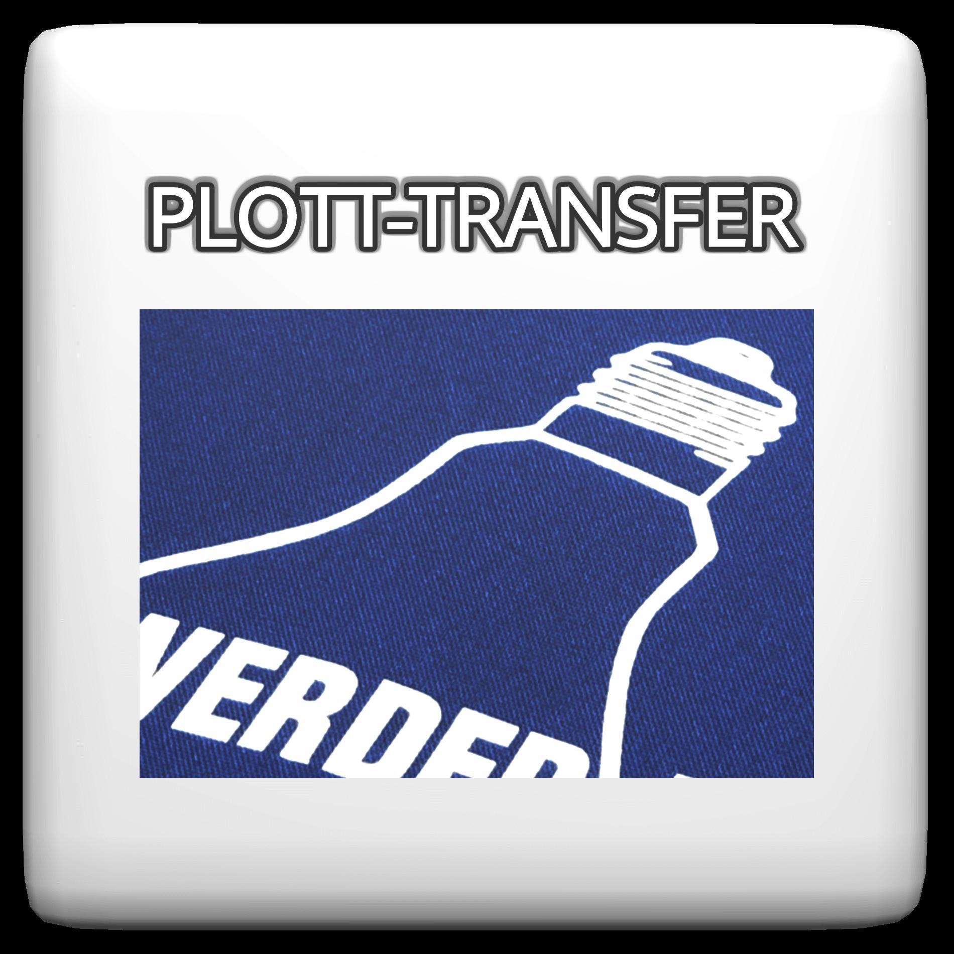 Plott-Transfer_Wuerfel